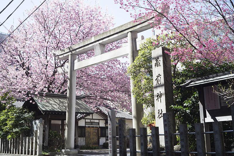 同じ町内にある蔵前神社。<br />変わりゆく町の姿を、これからも見守ってゆくことでしょう。